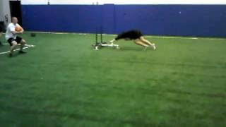 DNAfitness - Prowler push from hell...on turf - dna fitness