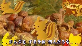 秋の童謡、唱歌!? 秋の子。里山風景。うさぎ 神戸森林公園の動物園