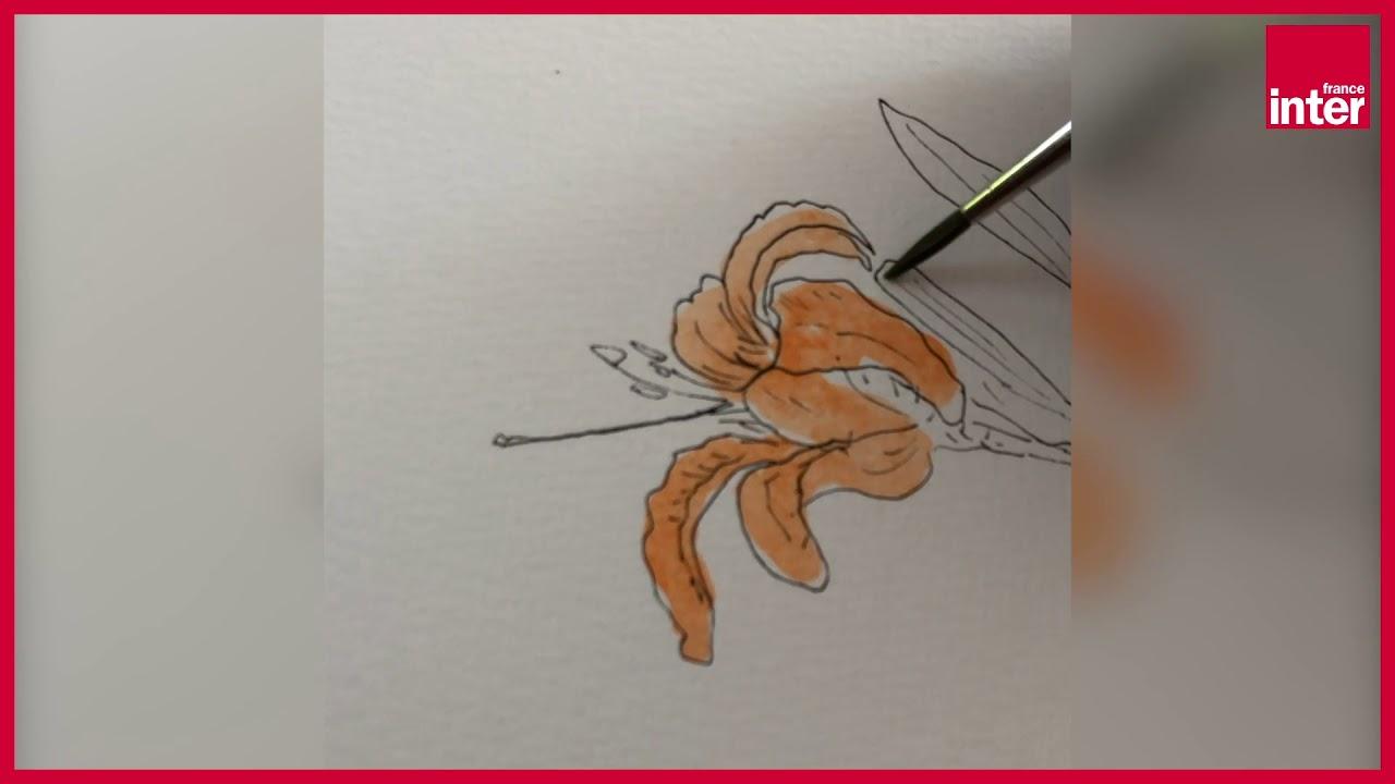 """Fred Bernard : Comment dessiner """"Carnet d'un voyageur immobile"""" ? La leçon de dessin confinée"""