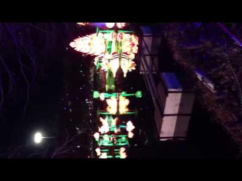 Lights festival in Dallas
