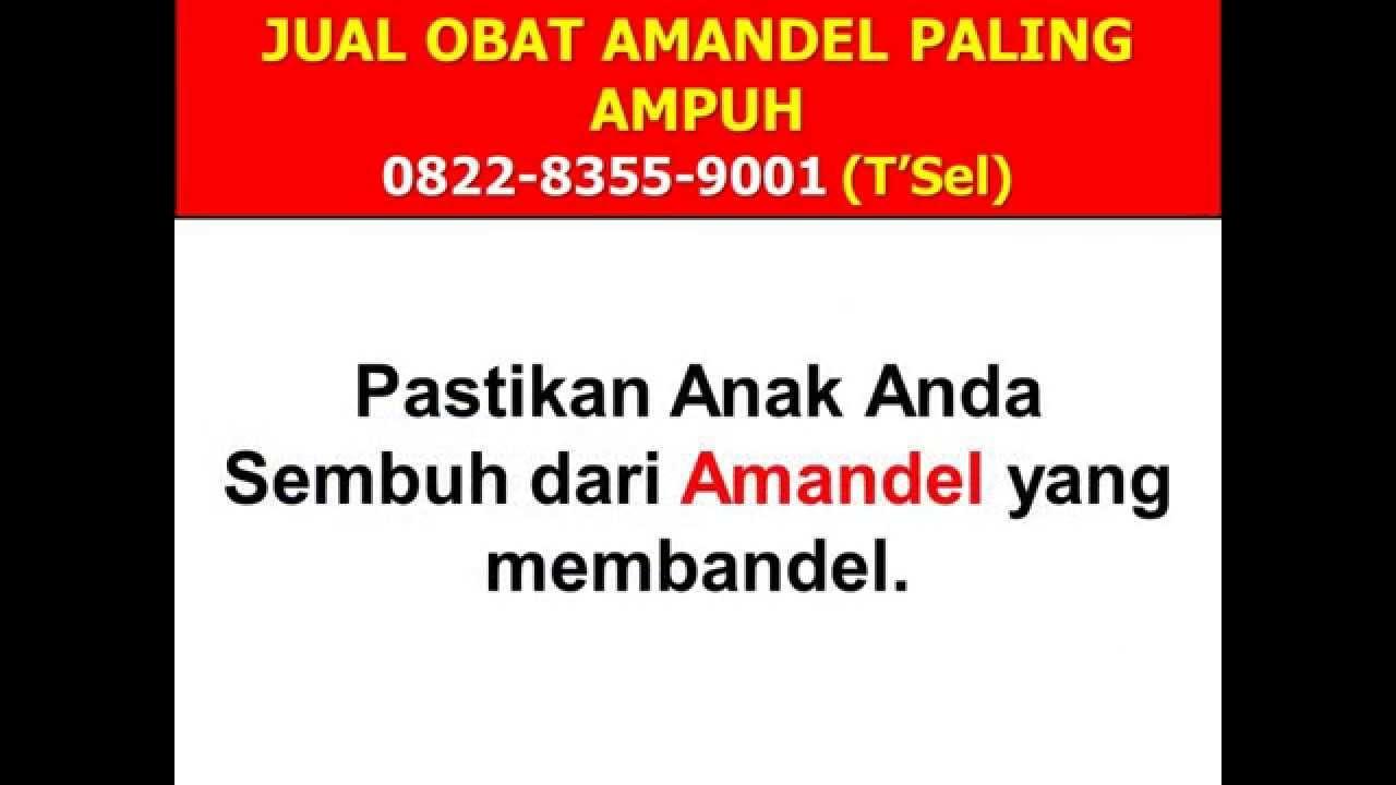 0822 8355 9001tsel Lamandel Obat Amandel Youtube