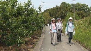 A161山の辺の道Ⅱ-7<夜都伎神社~峠の茶屋わわ>
