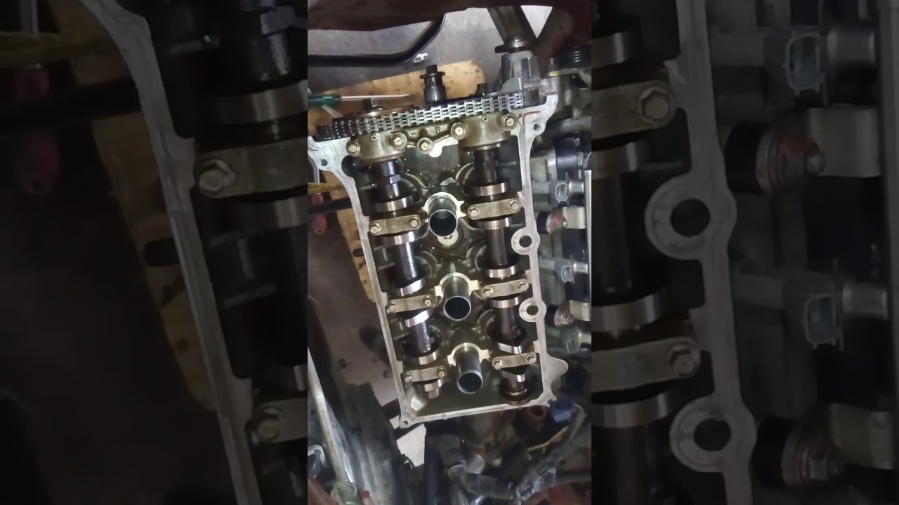 Suzuki   Timing Chain
