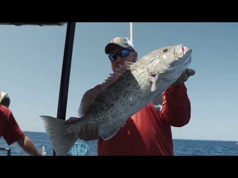 Top 3 Grouper Fishing Mistakes (Are You Making One Of These)?