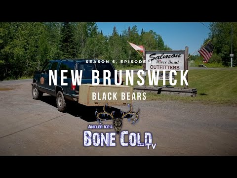 Season 6: Episode 3: New Brunswick Black Bear