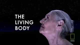 Внутри живого тела (трейлер)