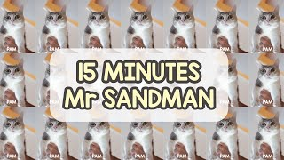 15 Minutes Best Mr. Sandman Cat Video By Mewpawmily