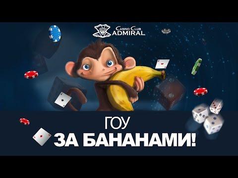 Видео Адмирал казино клуб