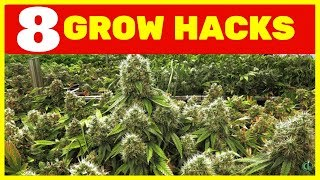 8 GROW HACKS You Can Use to Improve Your Grow