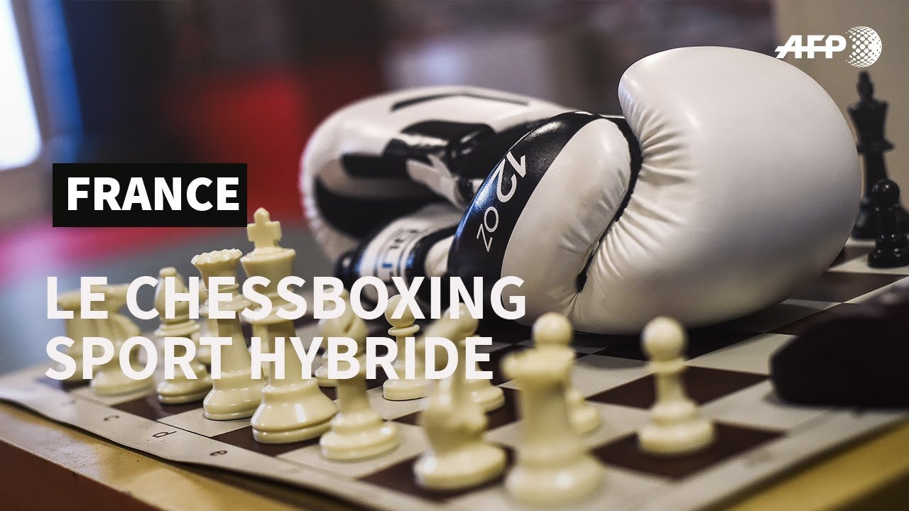 Le Chessboxing, sport hybride | AFP Photo