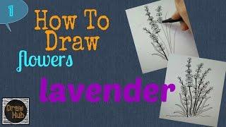 How To Draw Flowers # 1 Lavender   Flower Drawings   DrawHub