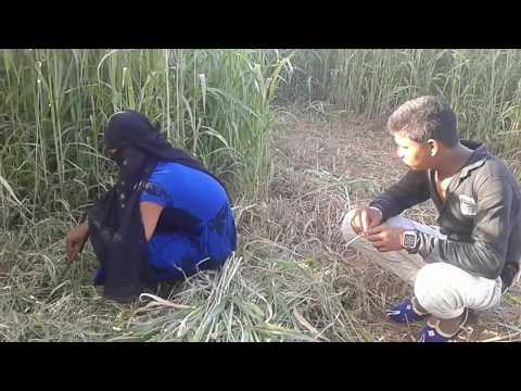 એકલી છોકરીને ખેતરમાં જોઈ ઉઠાયો ફાયદો   Ekali Chokari Gujarati Funny Video 2018