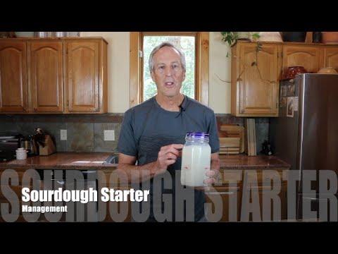 Sourdough Starter Management