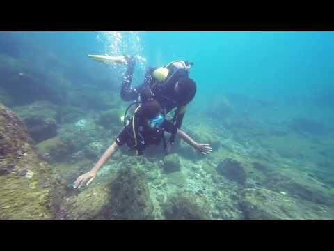 Netrani Island Diving 2017