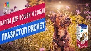 Капли для собак и кошек Празистоп Pro Vet | Обзор капли для собак и кошек Празистоп Pro Vet