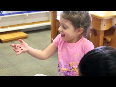 Farmview Montessori Garden School