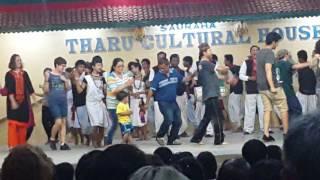 Download Video Enjoying The Tharu Cultural Dance at Sauraha MP3 3GP MP4