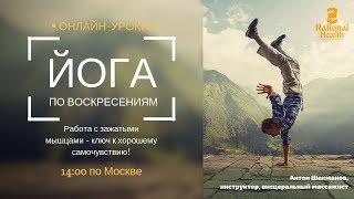 ЙОГА ДЛЯ ВСЕХ | открытые уроки по воскресениям | 14:00 по Мск