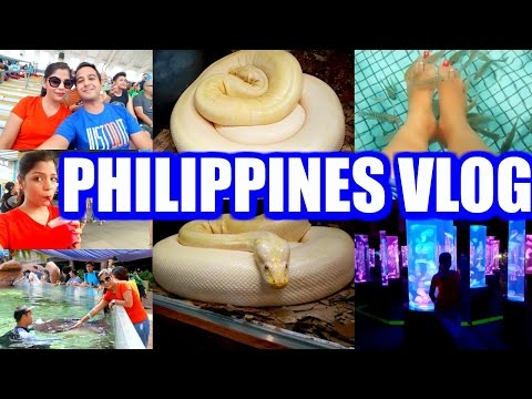 Philippines Vlog Date Night, Manila Ocean Park | A Day In My Life Vlog | SuperPrincessjo