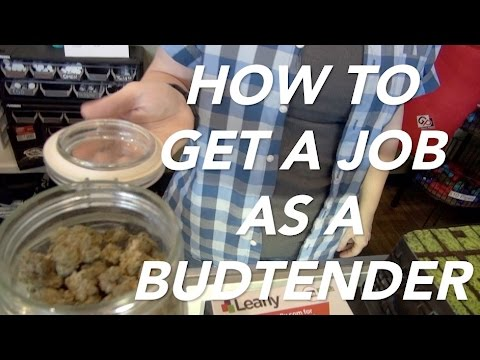 how to get a job as a budtender