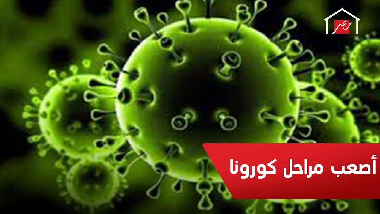 ستمر مصر بمرحلة صعبة إلا إذا.. نصائح الصحة العالمية للمصريين لمواجهة فيروس كورونا