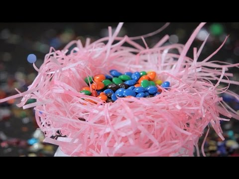 How to Make a Wafer Paper Bird's Nest