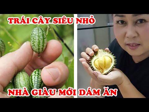Đại Gia Mới Dám Ăn 7 Trái Cây Tí Hon Siêu Nhỏ Có Giá Đắt Đỏ Nhất Việt Nam