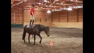 Pony Pros in Bend, Oregon - Riders Ages 1-16 Montage