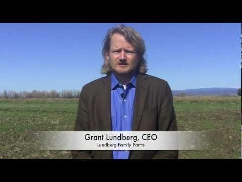 grant-lundberg-on-arsenic