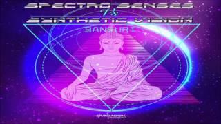 Spectro Senses Vs Synthetic Vision - Bansuri