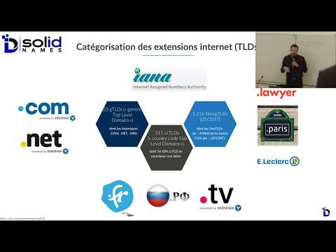 Le cybersquatting protéiforme de noms de domaine  - Conférence IDEPI Bordeaux, 18 Mai 2017