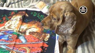 видео Искусство вышивания бисером