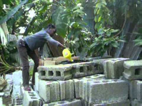 Muñoz Cacao Garden/Sustainability Center