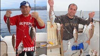 Deep Fishing in Greece - Ψάρεμα Μπαλάδων με Καλάμι και Ηλεκτρικό Μηχανισμό
