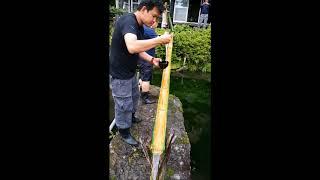 Japan Flying Bamboo Noodle Slide