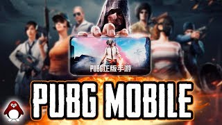 PUBG RELEASE DATE, OFFICIAL PUBG MOBILE AND MORE!