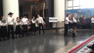 Aggie Wranglers perform for the George Bush Holiday Rotunda