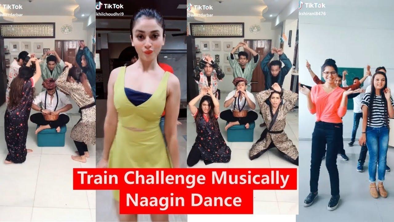 Train Challenge Funny Musically |Naagin Dance Awez Darbar