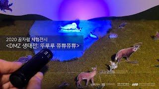 [전시소개]2020 꿈자람체험전시 'DMZ 생태전- 뚜…