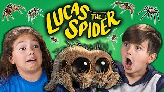KIDS REACT TO SPIDERS?! (Lucas The Spider)
