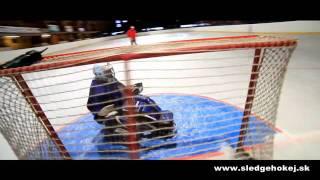 Slovak Sledge hockey