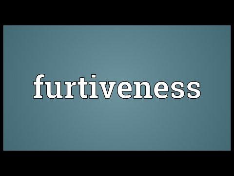 Header of furtiveness