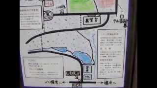 さかひろ(おっぱい)イズム→http://ameblo.jp/sakamoto-business/ 次回...