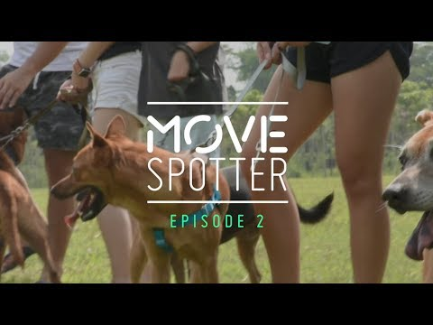 MOVE Spotter: Oasis Second Chance Animal Shelter