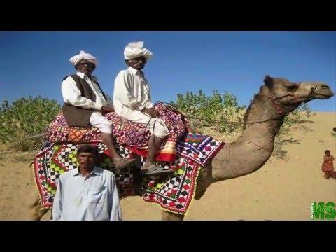 Thar Sindh Pakistan 2016