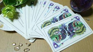運命が動き出す日は!?大逆転のチャンスは!?タロットカードで占います。4枚のカードから選んでね。