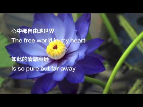 The Blue Lotus Lyrics Englishmandarin Subtitles Youtube