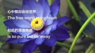 蓝莲花The Blue Lotus LYRICS (English+Mandarin subtitles) -许巍