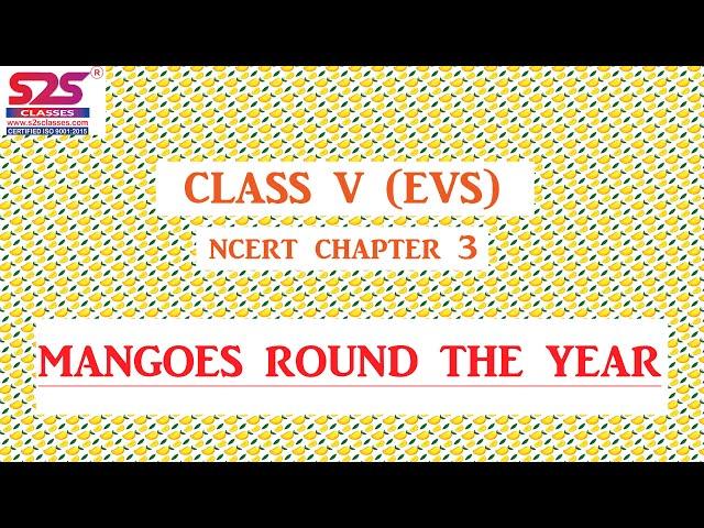 Mangoes Round the Year | NCERT Class 5 EVS | CBSE Class 5 EVS