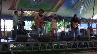 The Great Blue Heron Music Festival: July 5, 2014